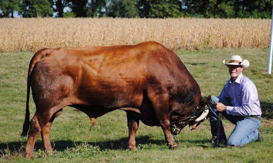 Jason with bull
