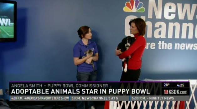 angela smith puppy bowl